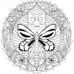 Mandala luciernaga