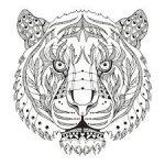 Mandala tigre para colorear